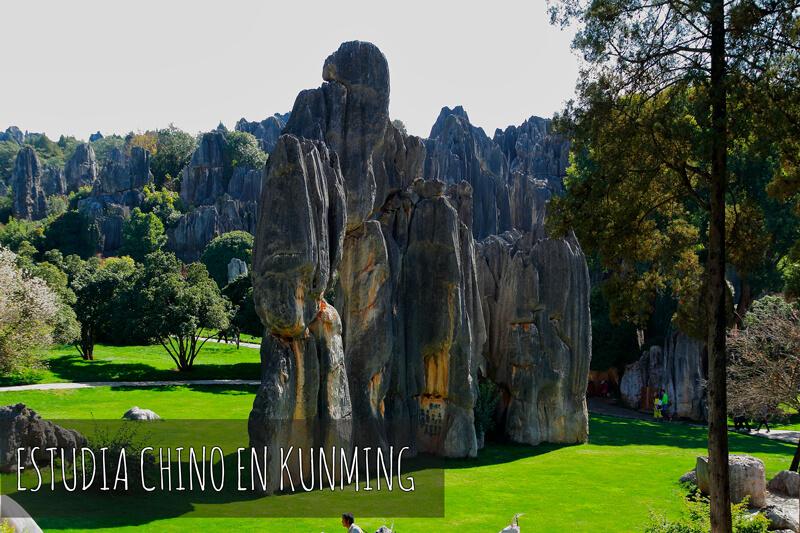 Estudia chino en Kunming